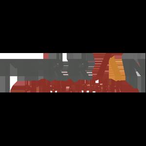 Terranlogoweb
